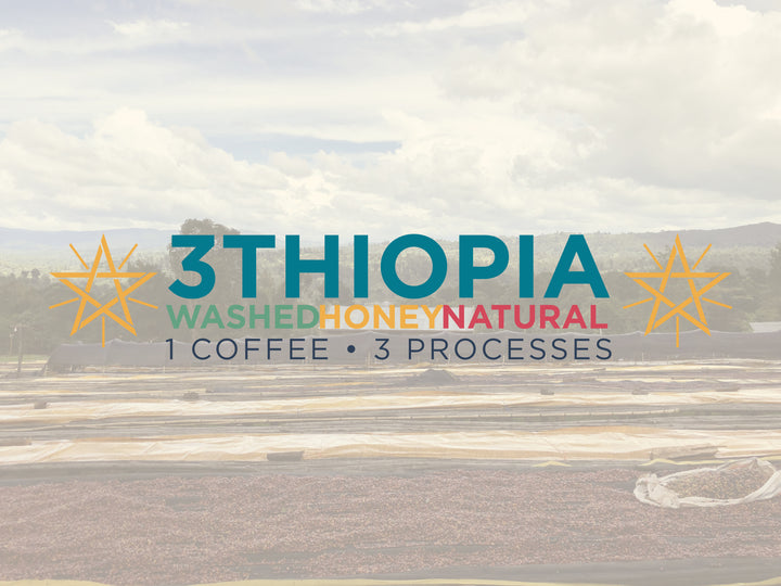 3thiopia Processing Blend