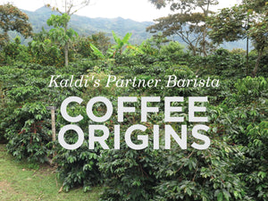 Kaldi's Partner Barista: Coffee Origins