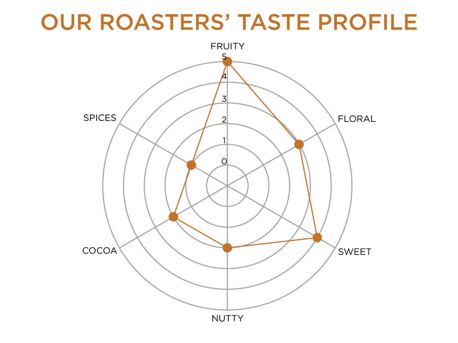 Roaster's Taste Profile | Fruity 5, Floral 3, Sweet 4, Nutty 2, Cocoa 2, Spices 1