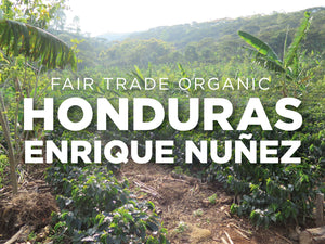 Fair Trade Organic Honduras Enrique Nuñez