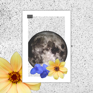 Moon Nav - Mini Print