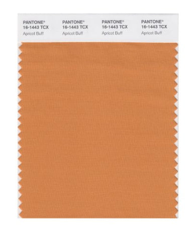 Pantone Smart 16-1443X Color Swatch Card, Apricot Buff