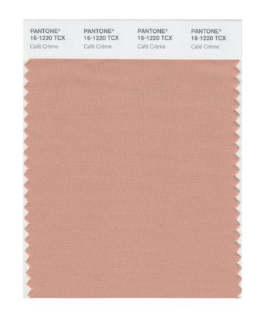 Pantone Smart 16-1220X Color Swatch Card, Caf Crme