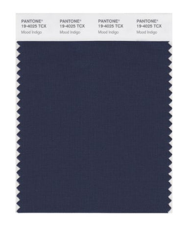 Pantone Smart 19-4025X Color Swatch Card, Mood Indigo