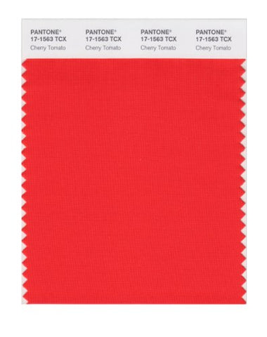 Pantone Smart 17-1563X Color Swatch Card, Cherry Tomato