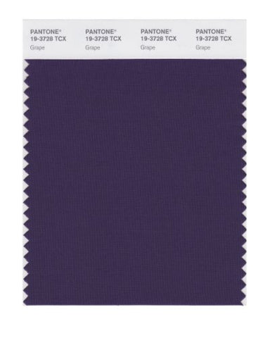 Pantone Smart 19-3728X Color Swatch Card, Grape