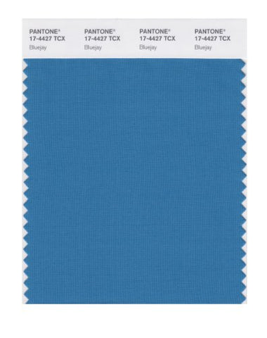 Pantone Smart 17-4427X Color Swatch Card, Bluejay