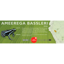 Load image into Gallery viewer, Ameerega bassleri - Standard Vivarium Label