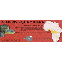 Load image into Gallery viewer, African Bush Viper (Atheris squamigera) Standard Vivarium Label