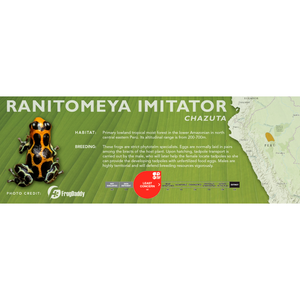 Ranitomeya imitator - Standard Vivarium Label