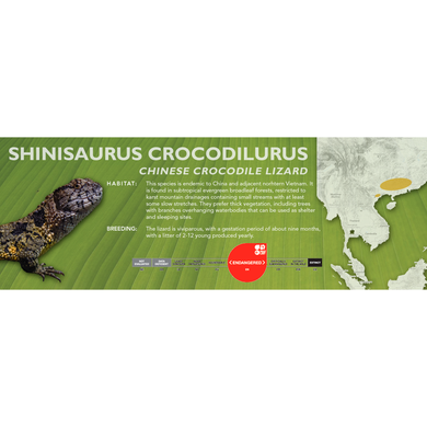 Chinese Crocodile Lizard (Shinisaurus crocodilurus) Standard Vivarium Label
