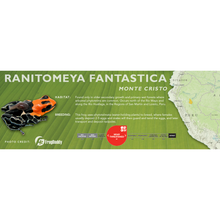 Load image into Gallery viewer, Ranitomeya fantastica - Standard Vivarium Label