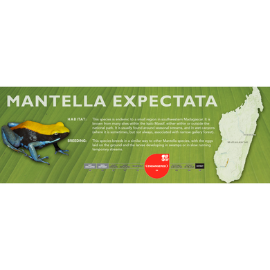 Mantella expectata - Standard Vivarium Label