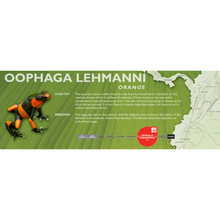 Load image into Gallery viewer, Oophaga lehmanni - Standard Vivarium Label