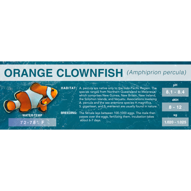 Orange Clownfish (Amphiprion percula) - Standard Aquarium Label