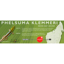Load image into Gallery viewer, Neon Day Gecko (Phelsuma klemmeri) Standard Vivarium Label