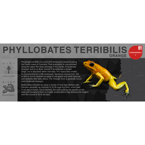 "Phyllobates terribilis ""Orange"" - Black Series Vivarium Label"