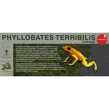 "Load image into Gallery viewer, Phyllobates terribilis ""Orange"" - Black Series Vivarium Label"