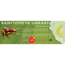 Load image into Gallery viewer, Ranitomeya uakarii - Standard Vivarium Label