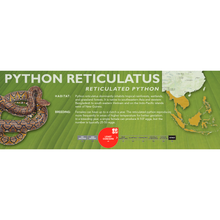 Load image into Gallery viewer, Reticulated Python (Python reticulatus) Standard Vivarium Label