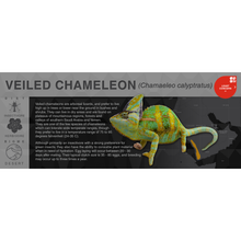 Load image into Gallery viewer, Veiled Chameleon (Chamaeleo calyptratus) - Black Series Vivarium Label