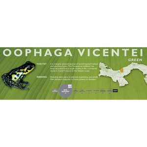 Oophaga vicentei - Standard Vivarium Label