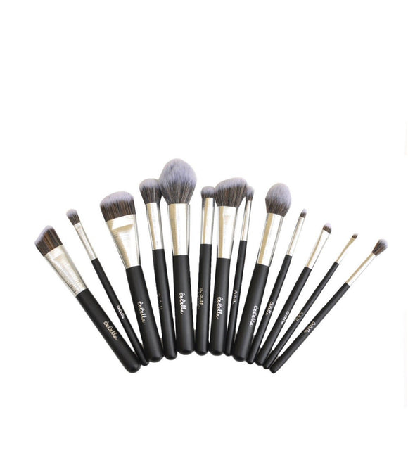 ALL YOU NEED 13PCS SILVER BRUSH SET