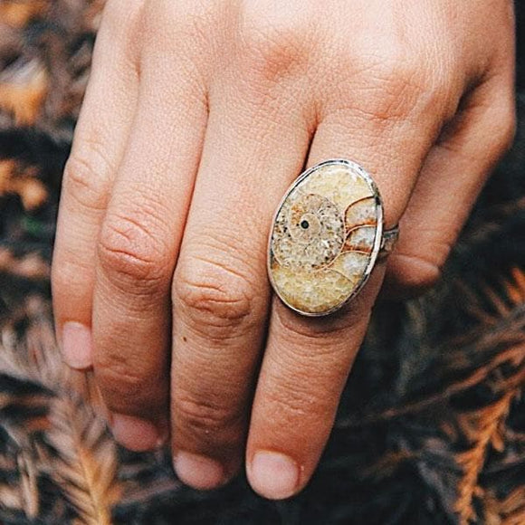Mineralized Ammonite Ring