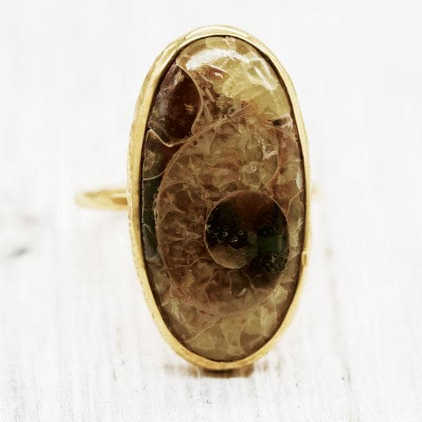 Mineralized Ammonite Elfin Ring