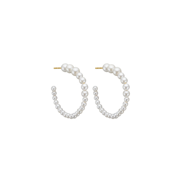 Drewy Hoop Earring - HIGH POLISHED GOLD