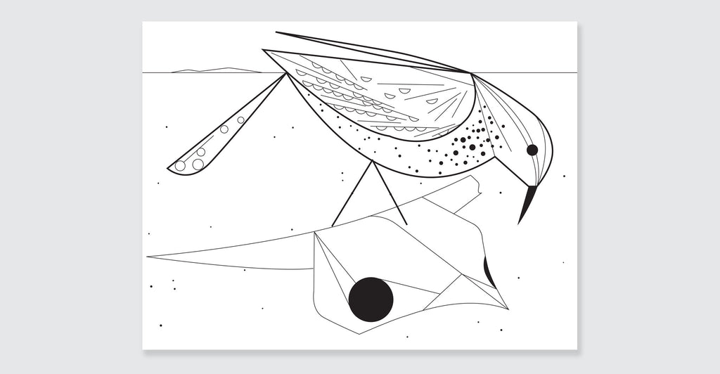 Charley Harper Coloring Book of Birds: Spread #9