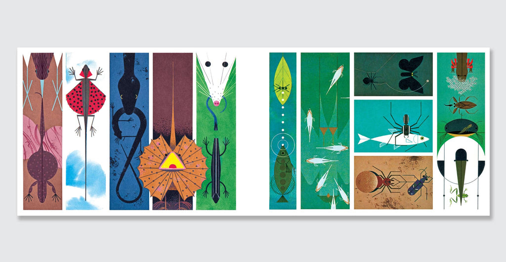 Charley Harper: An Illustrated Life: Spread #3