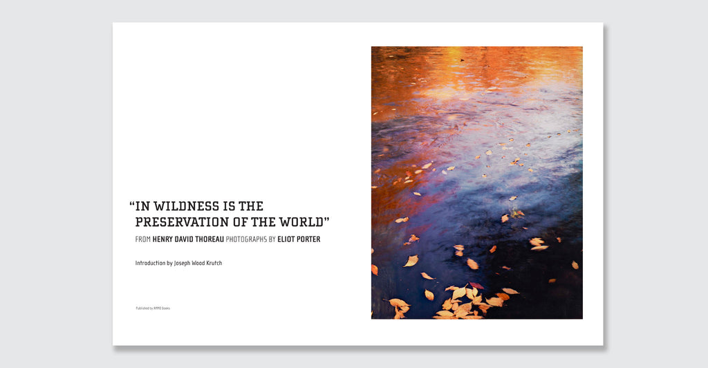 In Wildness Is the Preservation of the World: Spread #2