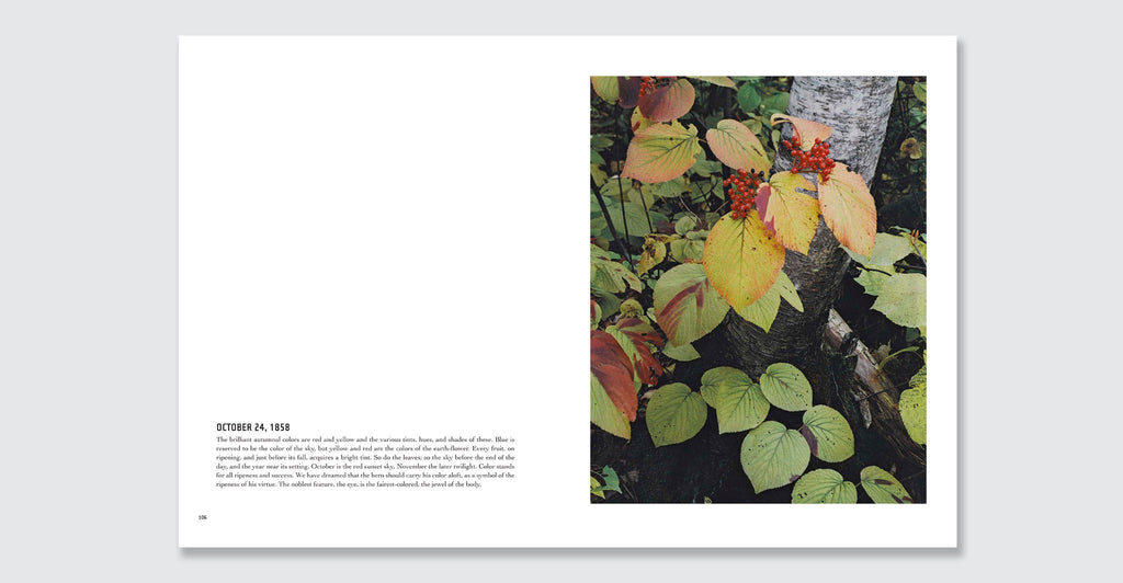 In Wildness Is the Preservation of the World: Spread #3