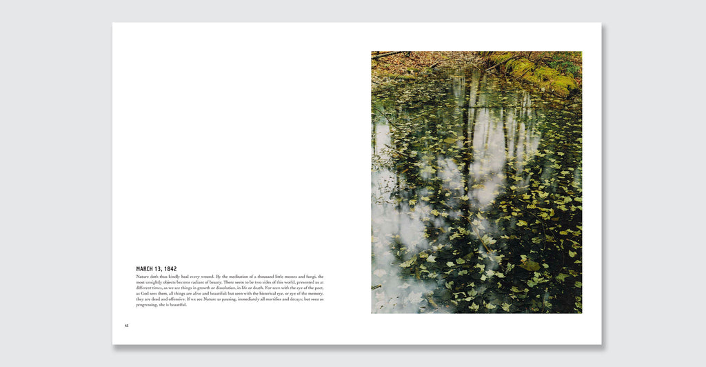 In Wildness Is the Preservation of the World: Spread #4