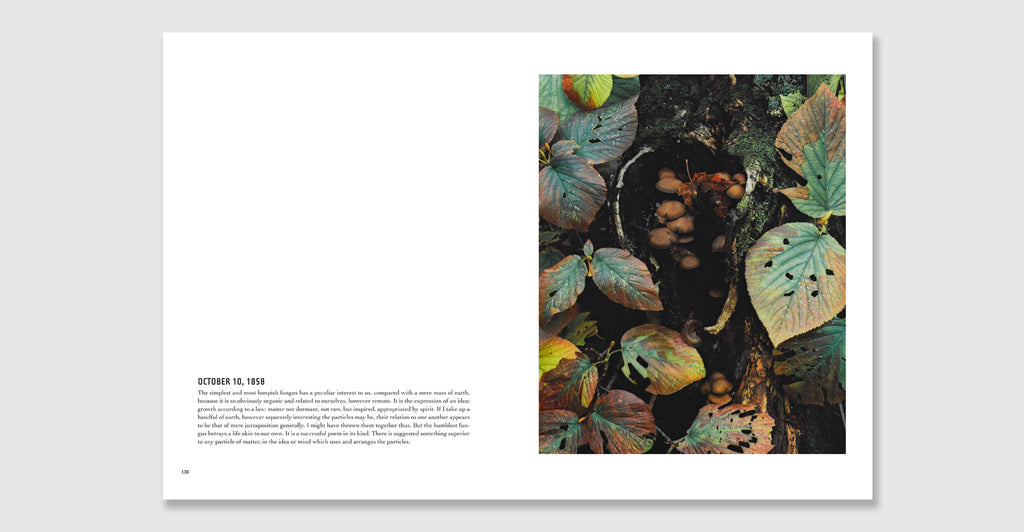 In Wildness Is the Preservation of the World: Spread #6