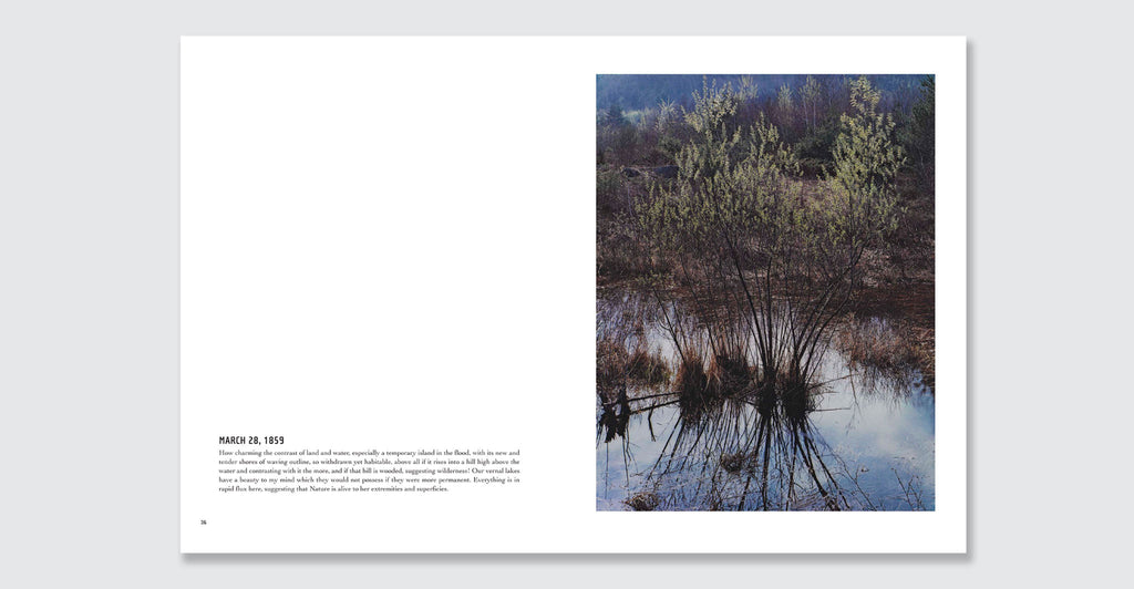 In Wildness Is the Preservation of the World: Spread #7