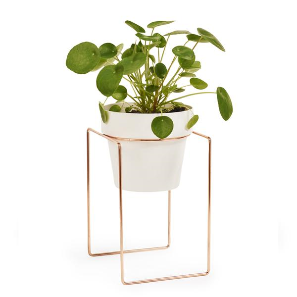 Pot Stand 'Shrub' Copper