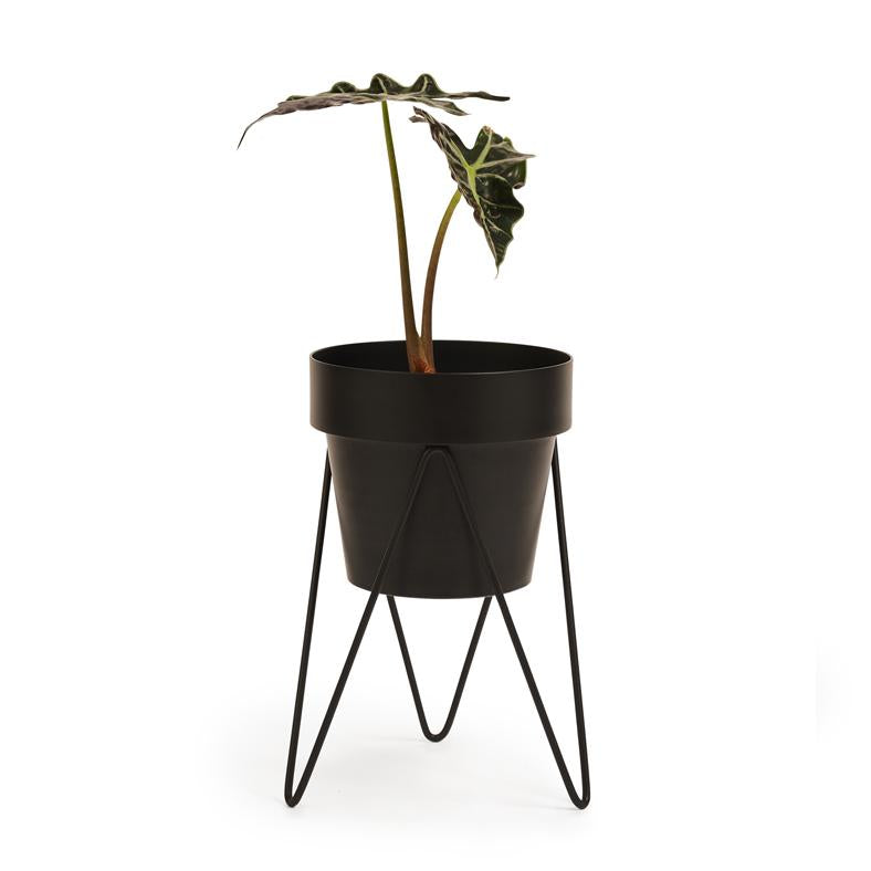Pot Stand 'Sprout' Black