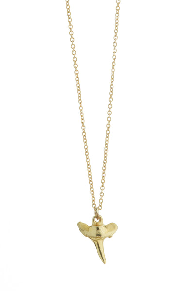 Petite Shark Tooth Necklace
