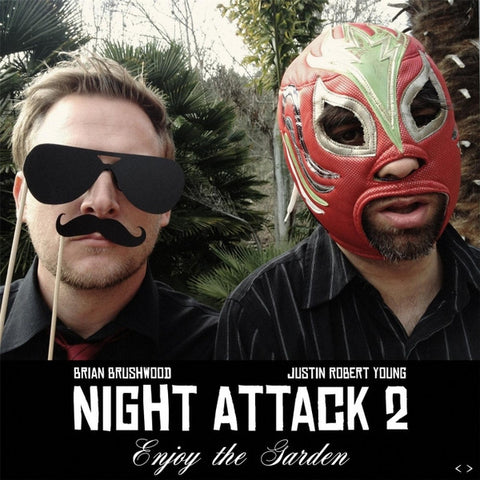 Night Attack 2: Enjoy the Garden