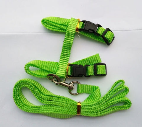 Puppy Kitten Harness and Leash
