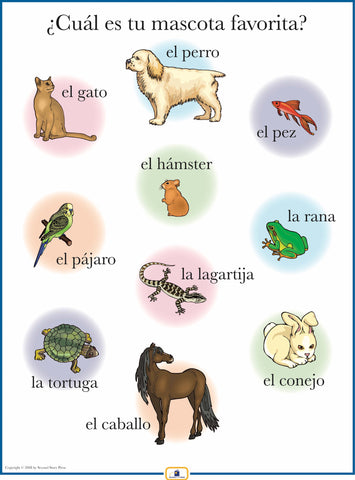 Spanish Pets Poster
