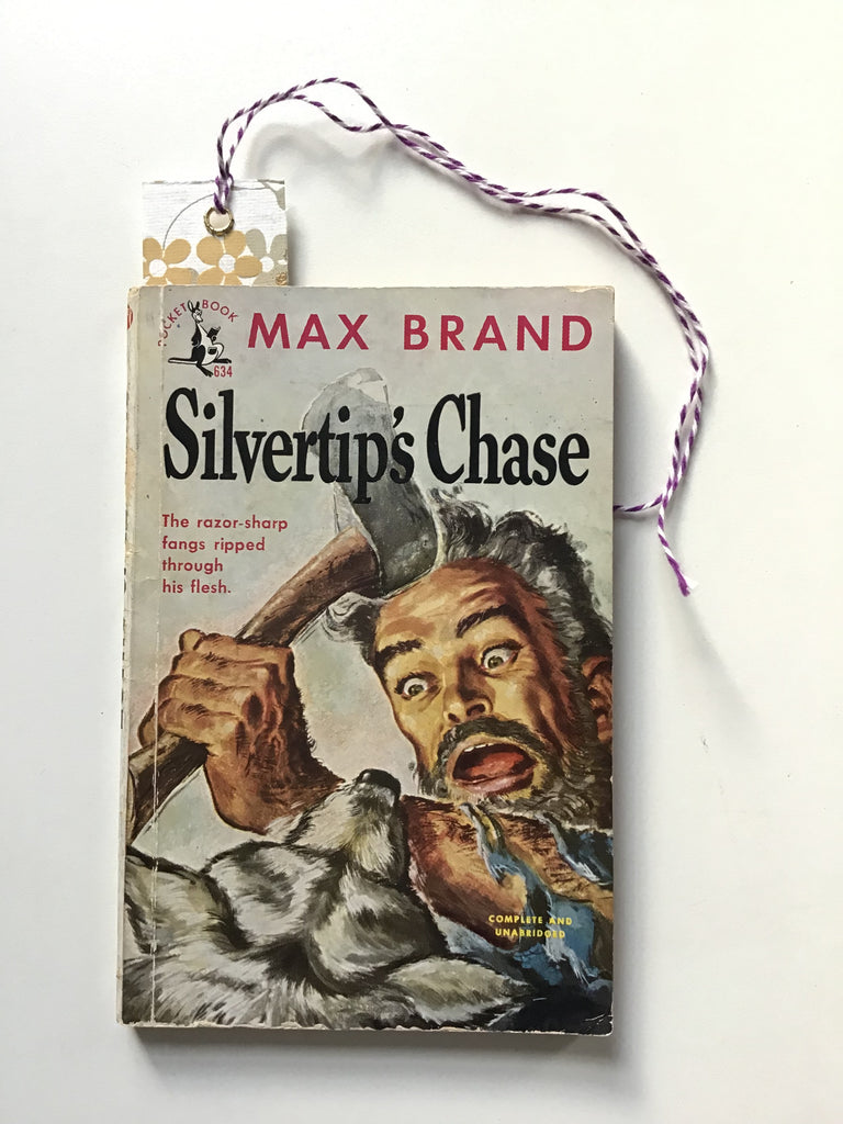 silvertips chase by max brand
