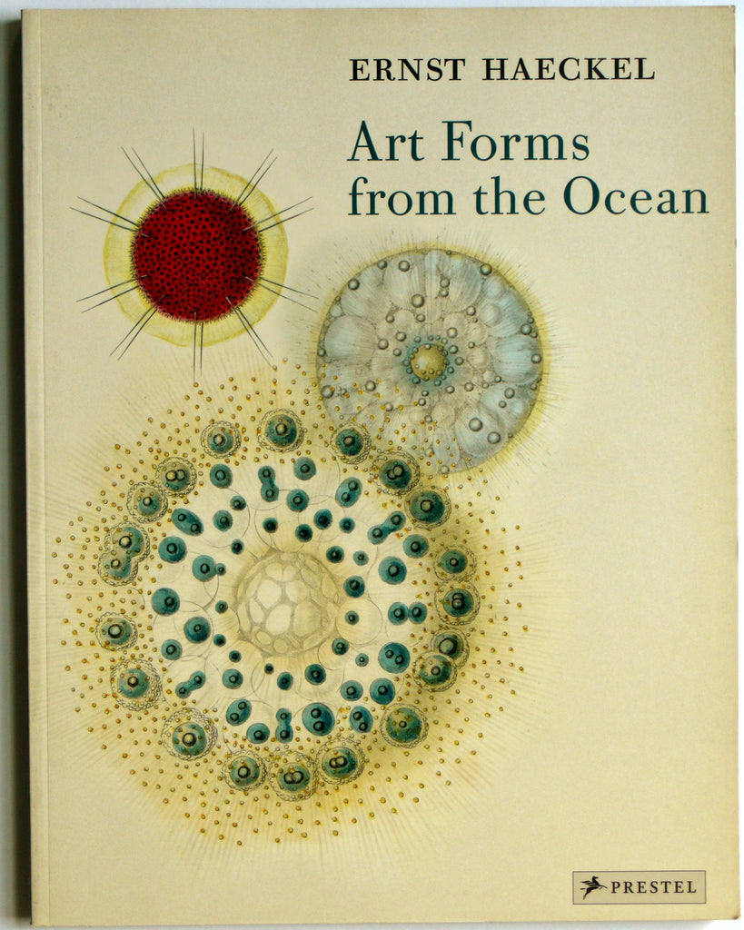 Ernest Haeckel: Art Forms From the Ocean
