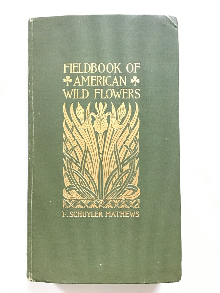 Fieldbook of American Wild Flowers