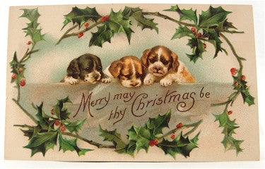 Old Christmas card with three dogs
