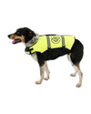 JETPILOT DOG PFD YELLOW