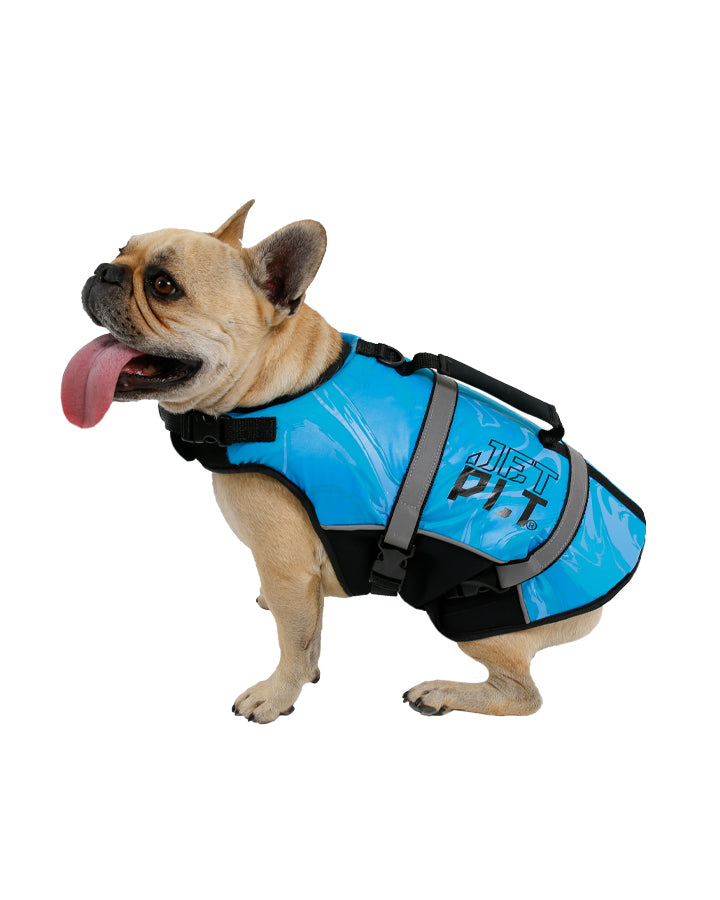 JETPILOT DOG S20 PFD BLUE