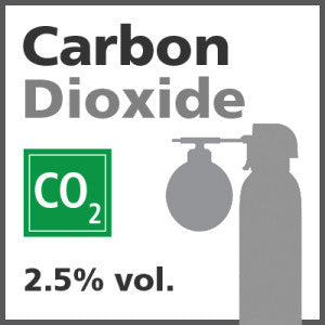 Carbon Dioxide Bump Test Gas - 2.5% vol. (CO2)